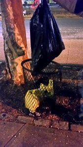 Assertive Kids Port Richmond Center Cleanup