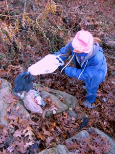 Clove Lakes Cleanup At Royal Oaks On Horse Trail By Assertive Kids