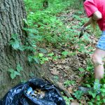 Clove Lakes Cleanup of Royal Oaks Woods
